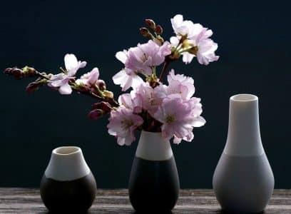 Décoration d'intérieur : et si vous optiez pour un vase design?