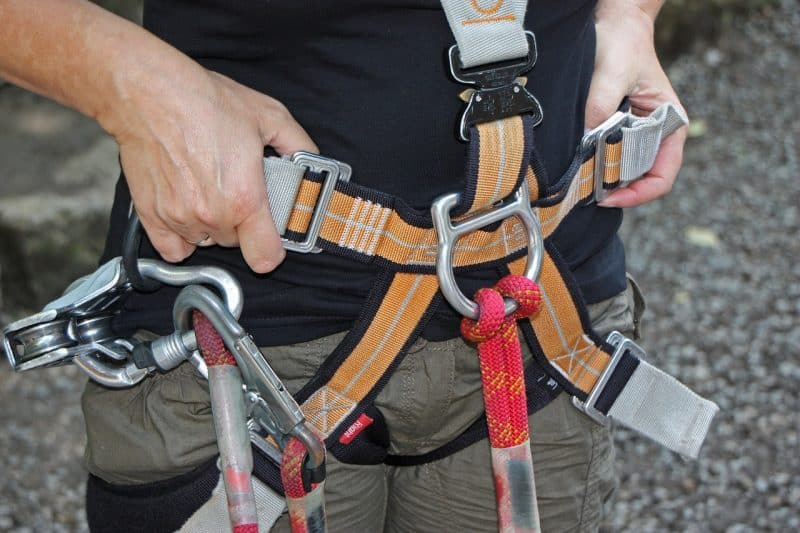 forest climbing park 931256 1280