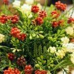 Pourquoi choisir des plantes artificielles ?